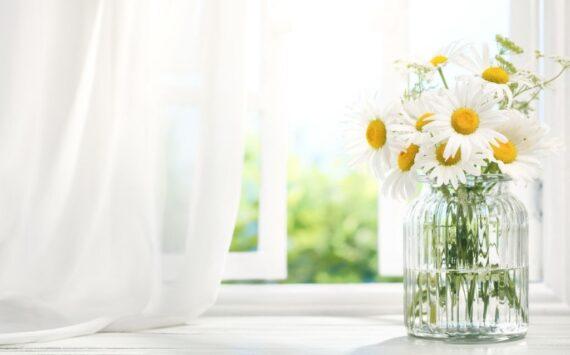 Dekorujemy okna! Jakie są aktualne trendy?