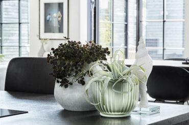 donice na rośliny stojące na stole