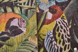 zbliżenie na papugi na płytkach